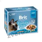 Brit Premium Cat D Fillets in Gravy Family Plate 1020g